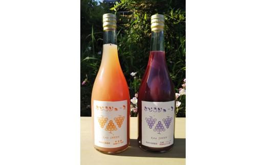 幸田町産ぶどう使用100%ジュース2種詰め合わせ 無添加 無糖 無加水 (幸田町寄附管理番号1910)