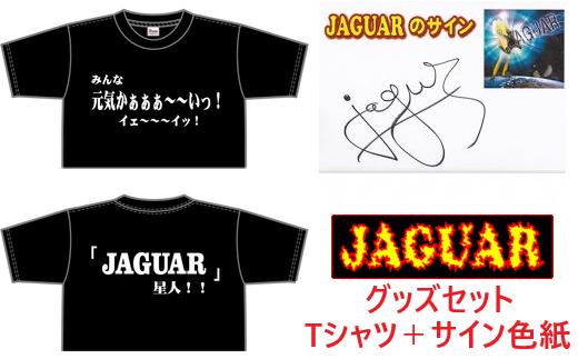 【12203-0030】JAGUAR Tシャツ(L)セット