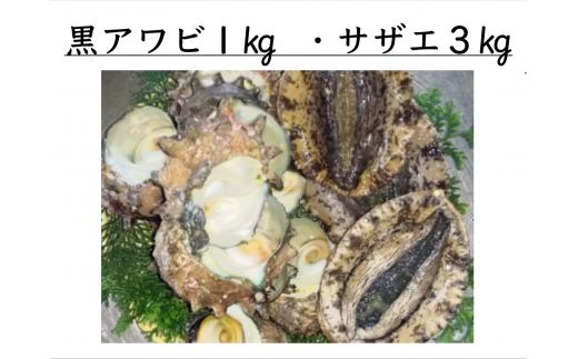 10-44 高級!活き黒アワビ1kg・活きサザエ3kg