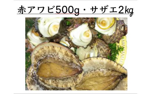 3-67 天然!活き赤アワビ500g・活きサザエ2kg