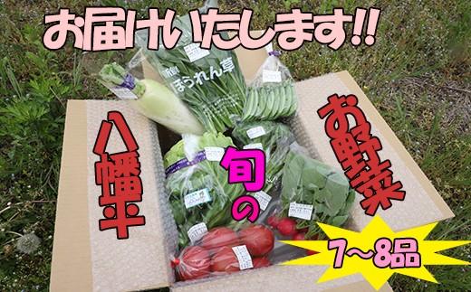 HMG270 【八幡平市産野菜】旬のお野菜食べきりセット