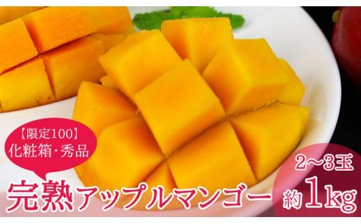 拠点産地沖縄市【限定100】完熟アップルマンゴー約1kg 化粧箱・秀品