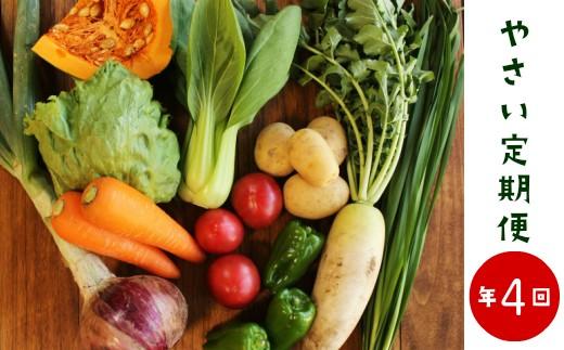 【年4回】土壌医監修!直送!旬の季節のお野菜定期便(8~10品)[C-8