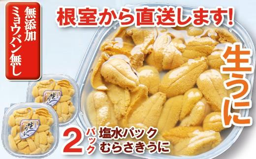 CA-71002 【9/8終了】ムラサキウニ塩水パック100g×2P