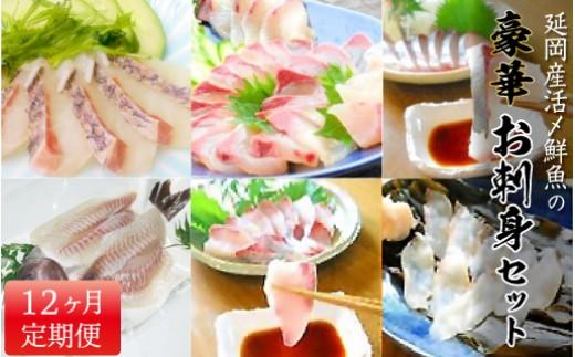 R18 延岡産活〆鮮魚の豪華お刺身(12ヶ月定期便)
