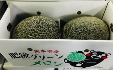 [№5682-0367]八代産フルーツ☆肥後グリーンメロン(2玉)