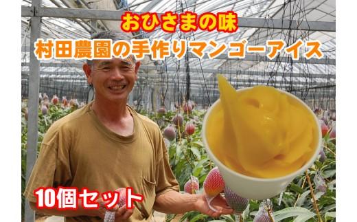 村田農園の手作りマンゴーアイス