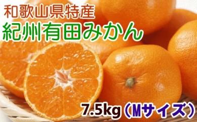 ■[厳選]紀州有田みかん7.5kg(Mサイズ・赤秀)【数量限定】[2020年11月~発送]