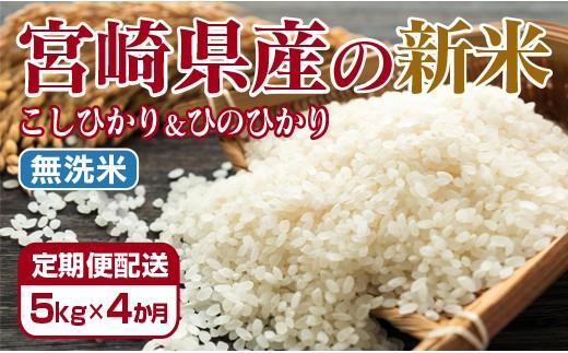 3-13【新米を定期でお届け!】宮崎県産 令和元年産 新米・無洗米 5kg×4ヶ月定期便