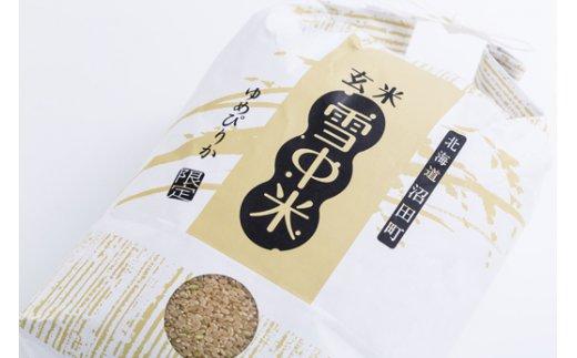 【1015-02】令和元年産 雪中米ゆめぴりか【玄米】10kg