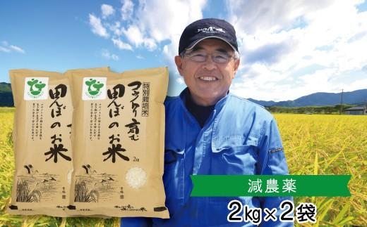 B-20 特別栽培米 コウノトリ育む田んぼのお米 2kg×2袋〈村上ファーム〉
