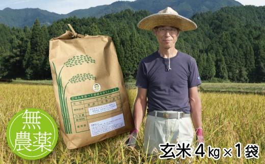 B-88【農薬不使用米】木村義昭さんのコシヒカリ【玄米4㎏】