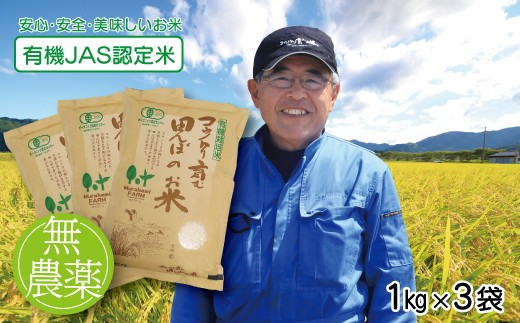 B-49 無農薬 有機JAS認定米 コウノトリ育む田んぼのお米 1kg×3袋〈村上ファーム〉