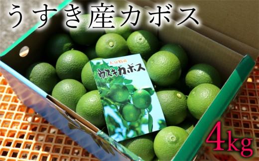ビタミンCたっぷり!うすき産カボス(4kg)