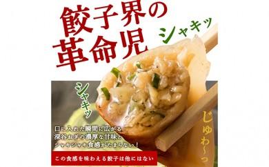 深谷名物「ねぎ餃子」54個(18個×3パック) 【11218-0105】