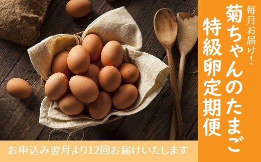042-08 毎月お届け!菊ちゃんのたまご(特級卵)定期便