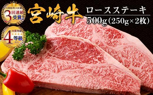 AD38 宮崎牛ロースステーキ(250g×2枚)&合挽きハンバーグ(100g×4個)セット《合計900g》