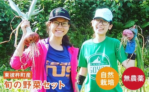 BBE002 【無農薬・自然栽培】東彼杵町産 〈Q-YO〉旬の野菜セット-1