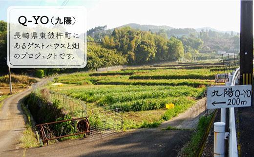 BBE002 【無農薬・自然栽培】東彼杵町産 〈Q-YO〉旬の野菜セット-4