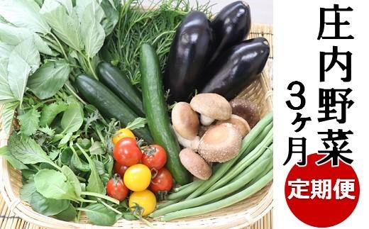 【3ヶ月お届け】庄内野菜の定期便