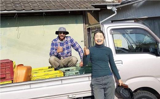 BBE002 【無農薬・自然栽培】東彼杵町産 〈Q-YO〉旬の野菜セット-7