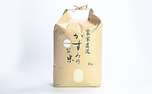 M10S01 【予約受付中】 令和元年新米 美濃加茂産のお米 (10㎏)