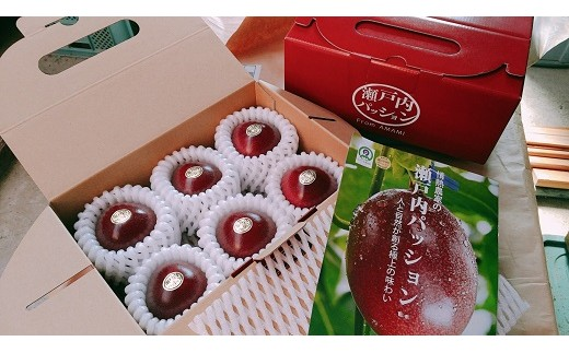 BJ-9 ながむら農園のパッションフルーツ(化粧箱6個入り×4箱)