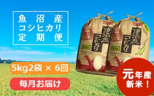 魚沼産コシヒカリ定期便 5kg2袋×6回/毎月お届け