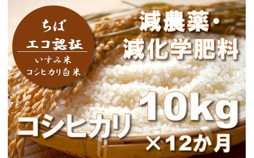 I602 減農薬・減化学肥料コシヒカリ定期便コース(年12回お届け)