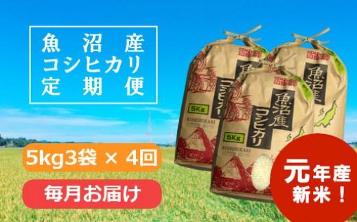 【新米予約】魚沼産コシヒカリ定期便  5kg3袋×4回/毎月お届け