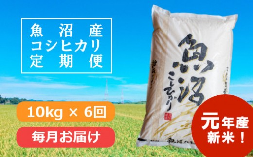 【新米予約】魚沼産コシヒカリ定期便 10kg×6回/毎月お届け
