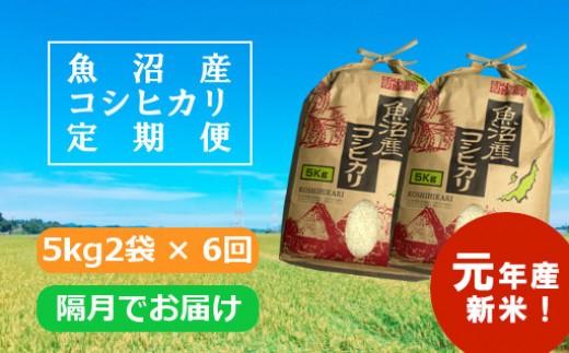 魚沼産コシヒカリ定期便 5kg2袋×6回/隔月でお届け