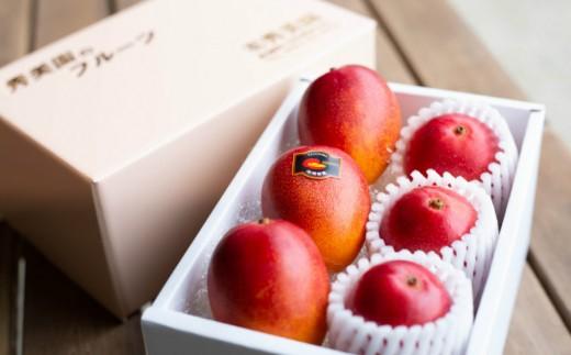 ■完熟アップルマンゴー おまかせセット