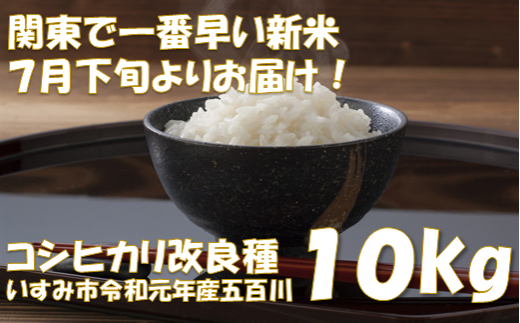 関東で一番早い新米!令和元年産五百川10kg