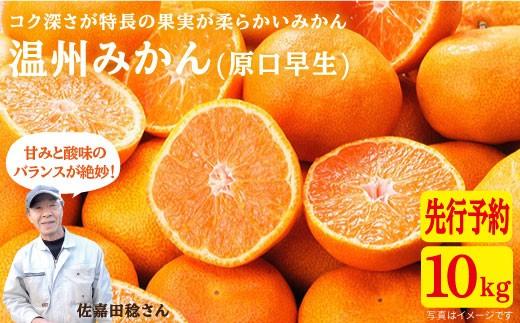 CAA020 原口果樹園の元祖原口みかん(極上みかん) (カタログコード:C-1)-1