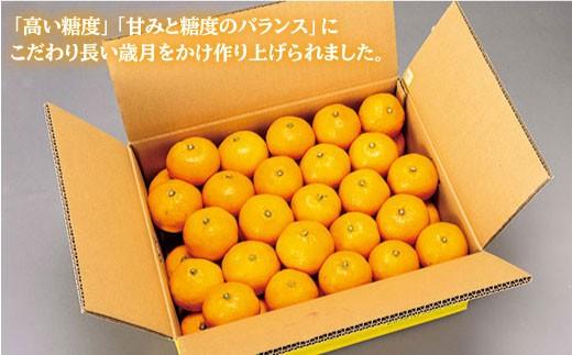 CAA020 原口果樹園の元祖原口みかん(極上みかん) (カタログコード:C-1)-3
