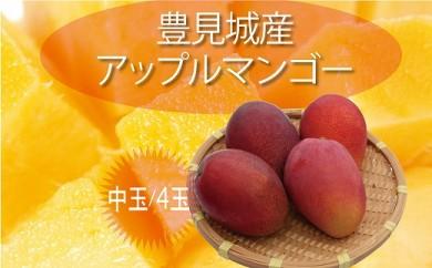 【2020年発送】豊見城完熟アップルマンゴー(中玉4玉)