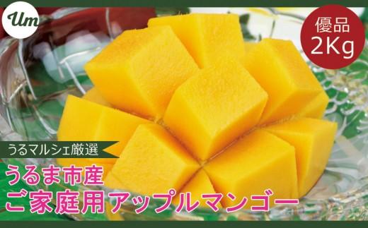 【優品】うるま市産マンゴー2キロ【2019年7月お届け】