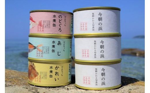 730.のどぐろ・あじ・かれい・旬魚の水煮缶詰め合わせセット【シーライフ】