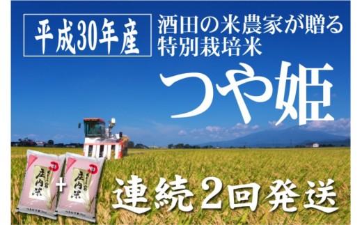 SC0094 平成30年産米「酒田の米農家から直送!」つや姫5kg 2回発送! SI