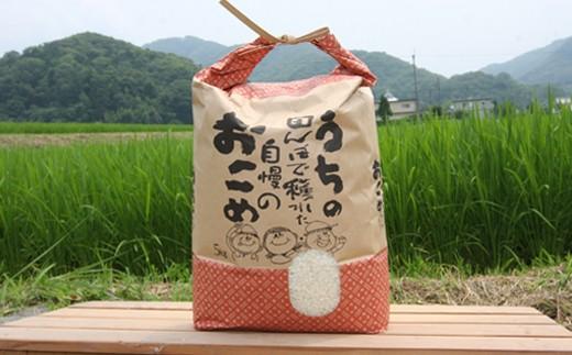 <2019年産>特別栽培米<ヒノヒカリ> 精米10kg (5kg×2袋) 【1029059】
