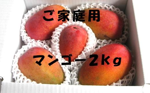 【先行予約】【ご家庭用】完全無加温~地球に優しい天城マンゴー2kg