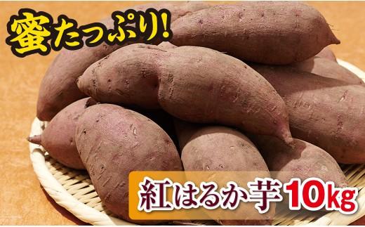 A1-22143/【先行予約】蜜たっぷり!紅はるか芋10kg