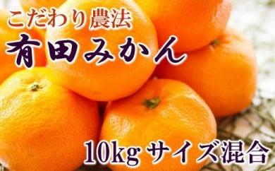 ■こだわり農法の有田みかん10kg(サイズ混合)[2020年11月~発送]