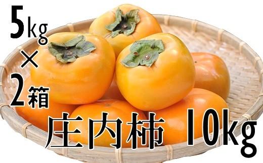 庄内柿 元祖種無し渋抜き 約10kg