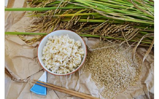 仁淀ブルーの恵み「おち米」(玄米)3kg