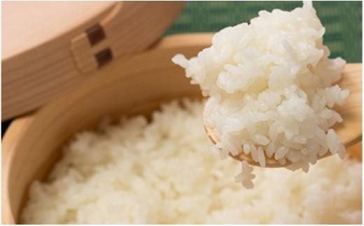 60P9201 【新米予約】秋田県産あきたこまち(無洗米)10kg