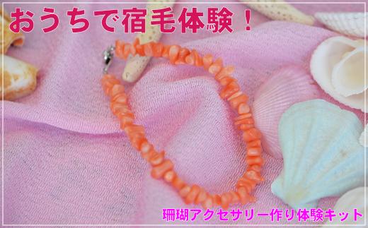 [051426]珊瑚アクセ作り体験キットE(深海珊瑚ヤタラブレスレット)
