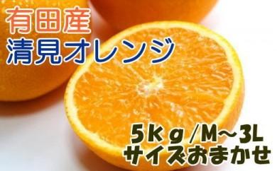 ■[厳選]有田産清見オレンジ約5kg(サイズおまかせ・秀品)[2021年2月~発送]