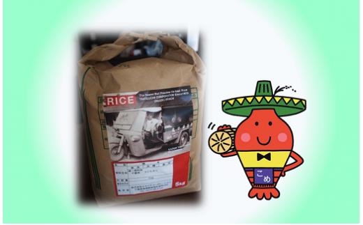 B201 コメアミーゴこだわりのいすみ米コシヒカリ5kg